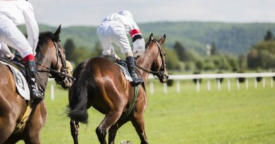 Racecourse betting continues to grow in Ireland reports HRI