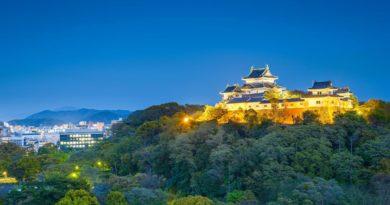 Wakayama delays operator selection until January 2021