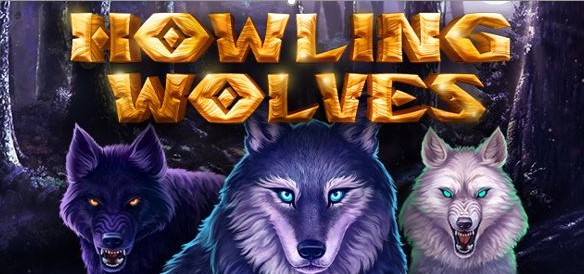 Wolf betting game volleyball betting