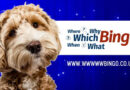 WhichBingo rebrands with help from man's best friend